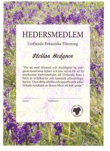 Stellan Hedgren